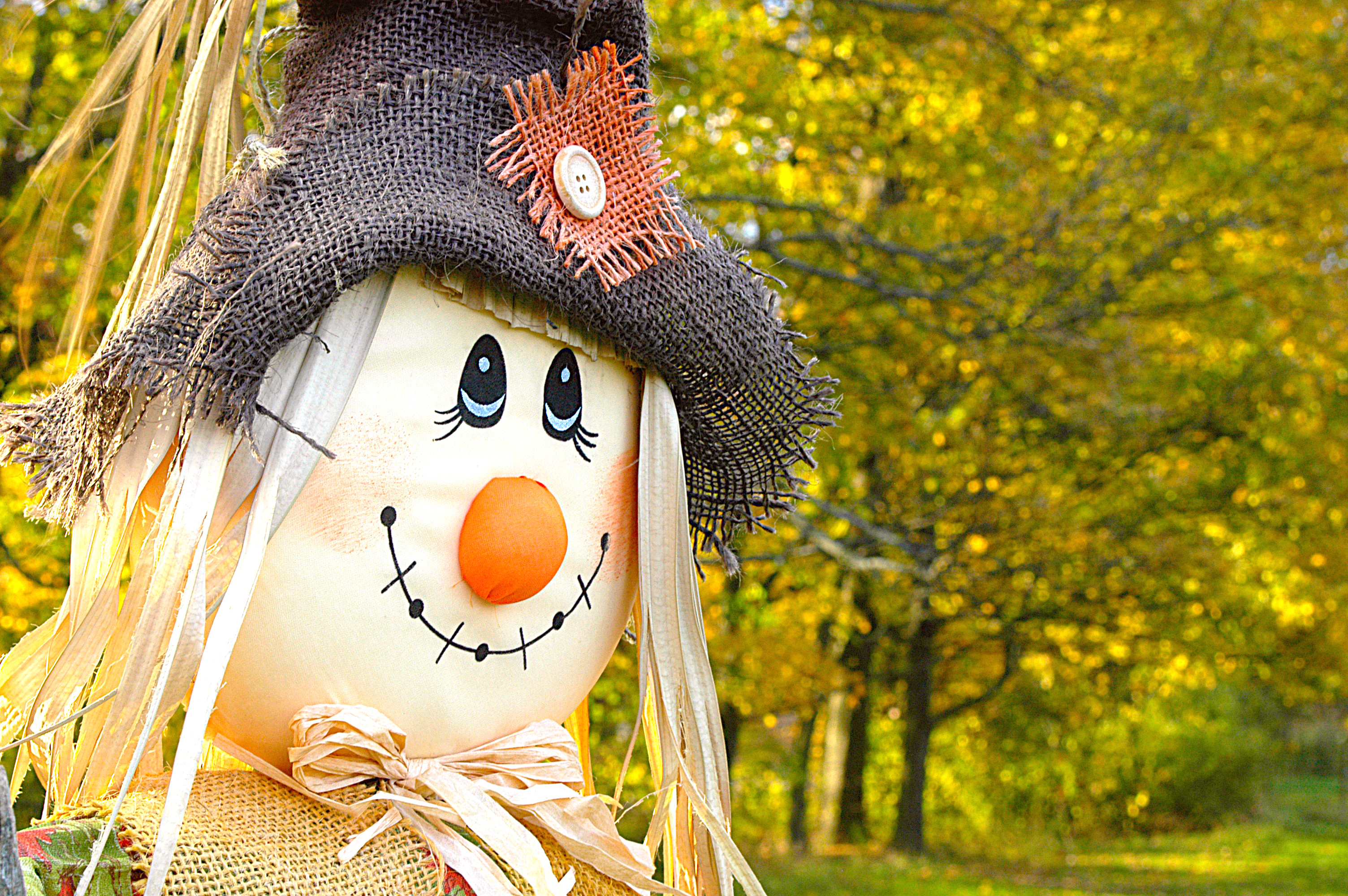 Fall hostess gift ideas happy home fairy for Scarecrow home decorations co ltd