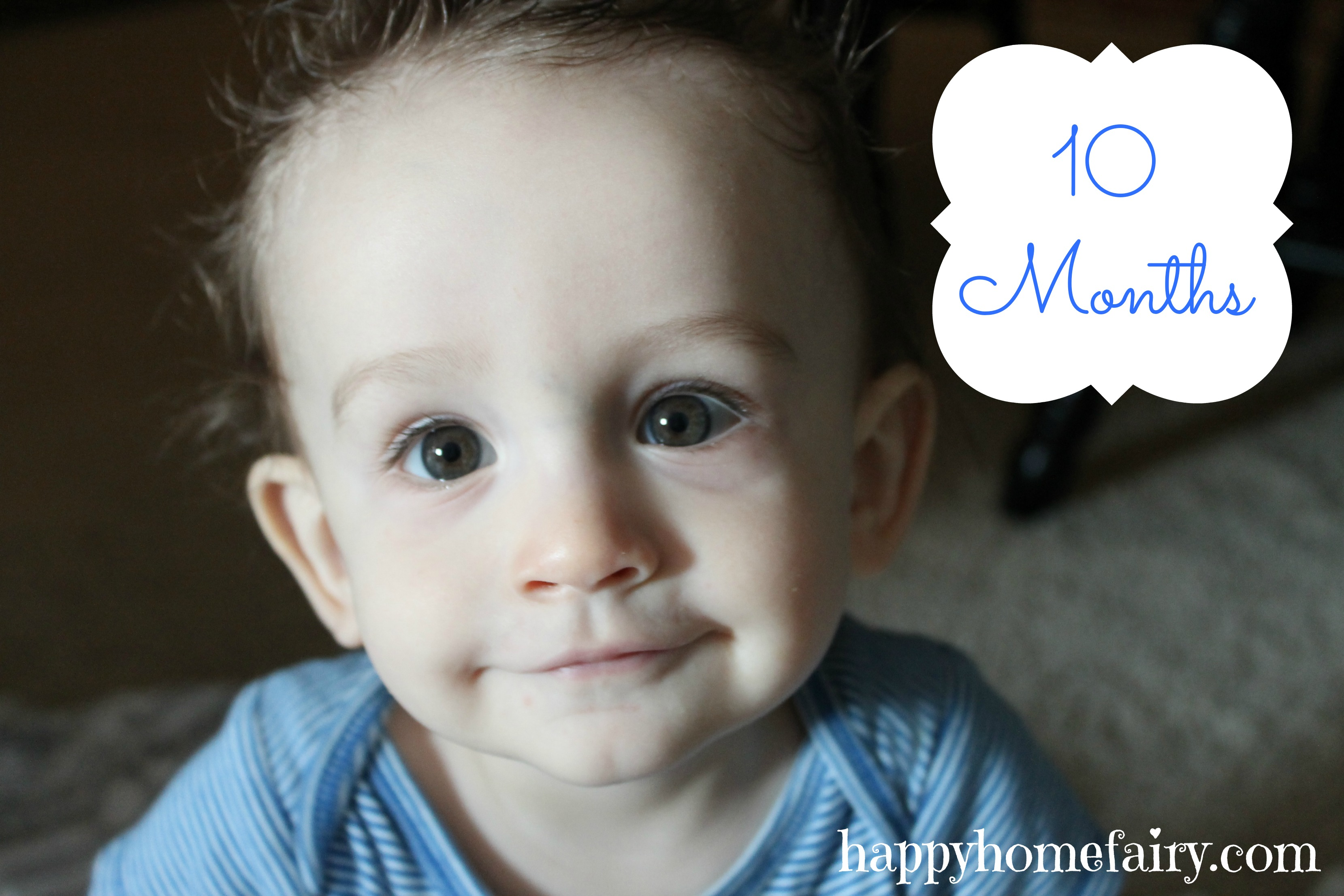 10 Months What I Learned From Dropping My Baby Happy Home Fairy